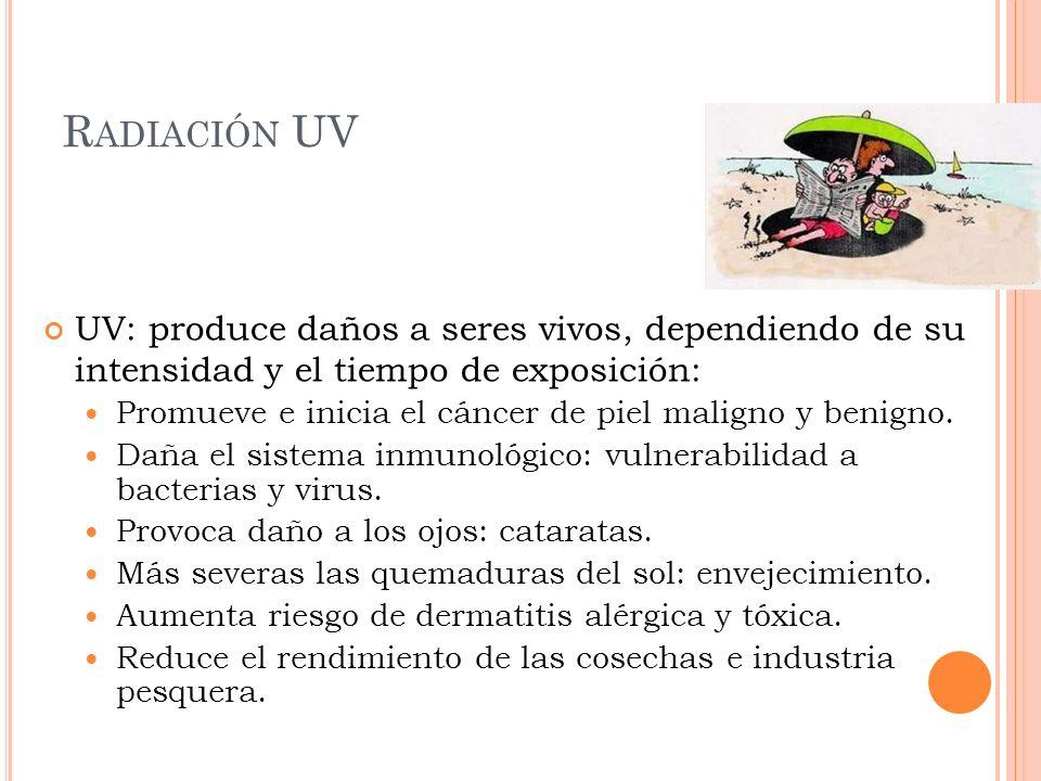 Radiación UV UV: produce daños a seres vivos, dependiendo de su intensidad y el tiempo de exposición: