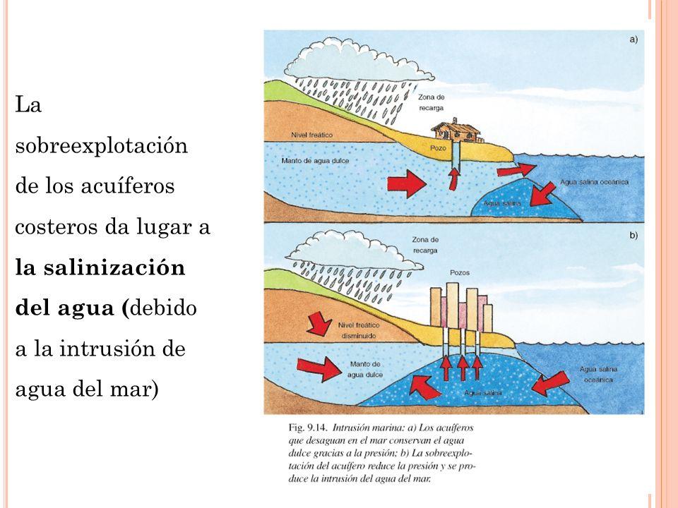La sobreexplotación de los acuíferos costeros da lugar a la salinización del agua (debido a la intrusión de agua del mar)