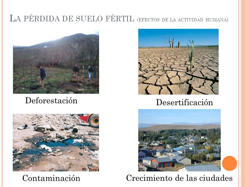La pérdida de suelo fértil (efectos de la actividad humana)