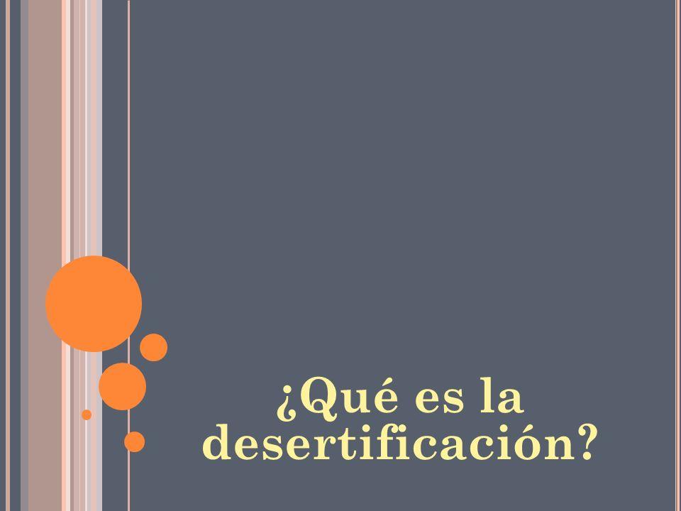 ¿Qué es la desertificación