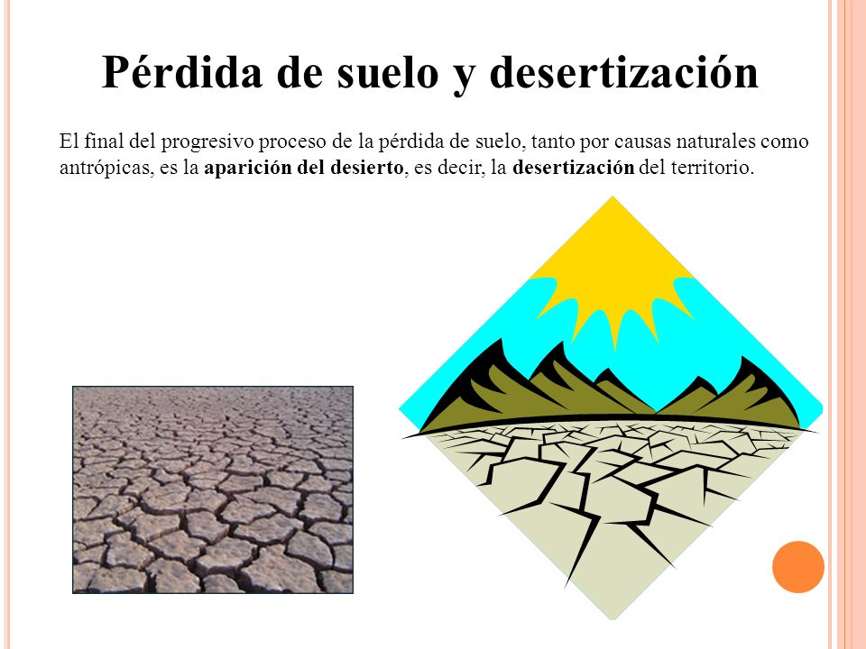 Pérdida de suelo y desertización