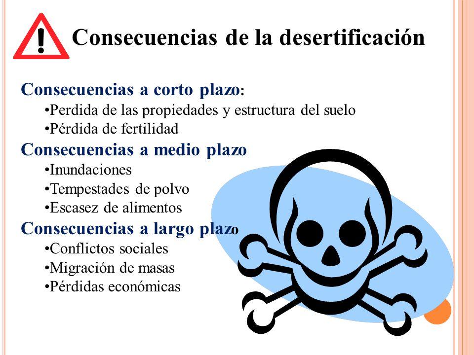 Consecuencias de la desertificación