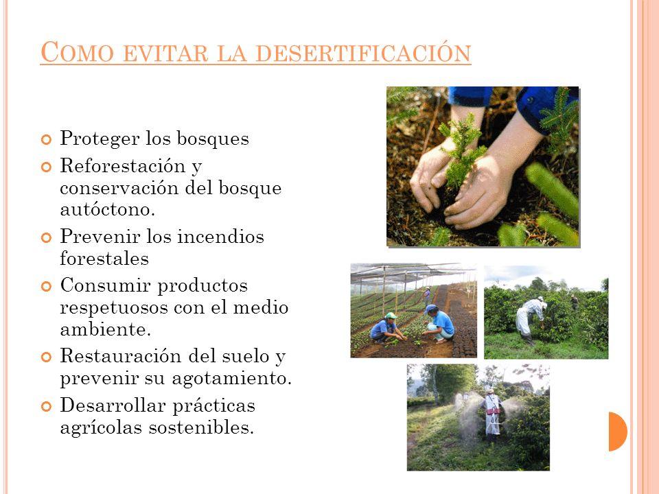 Como evitar la desertificación