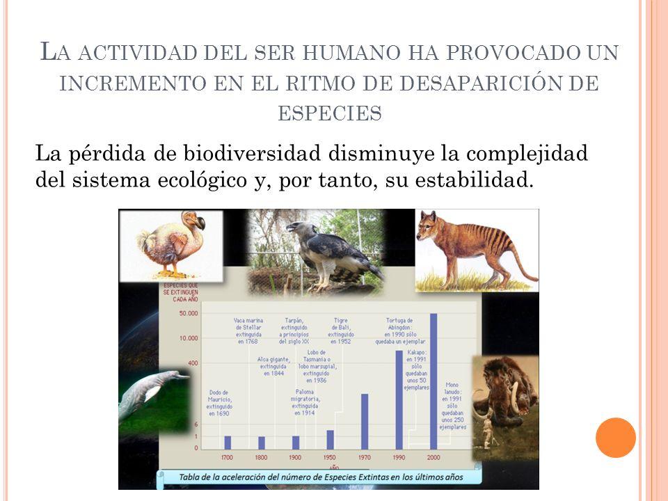 La actividad del ser humano ha provocado un incremento en el ritmo de desaparición de especies