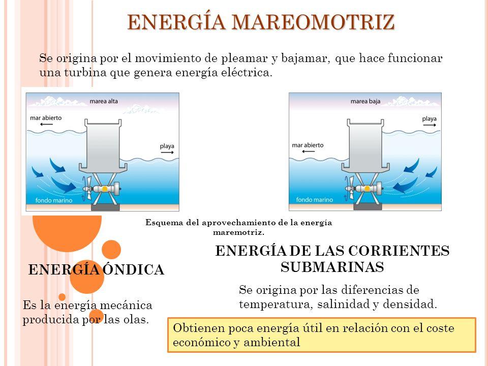 ENERGÍA MAREOMOTRIZ ENERGÍA DE LAS CORRIENTES SUBMARINAS
