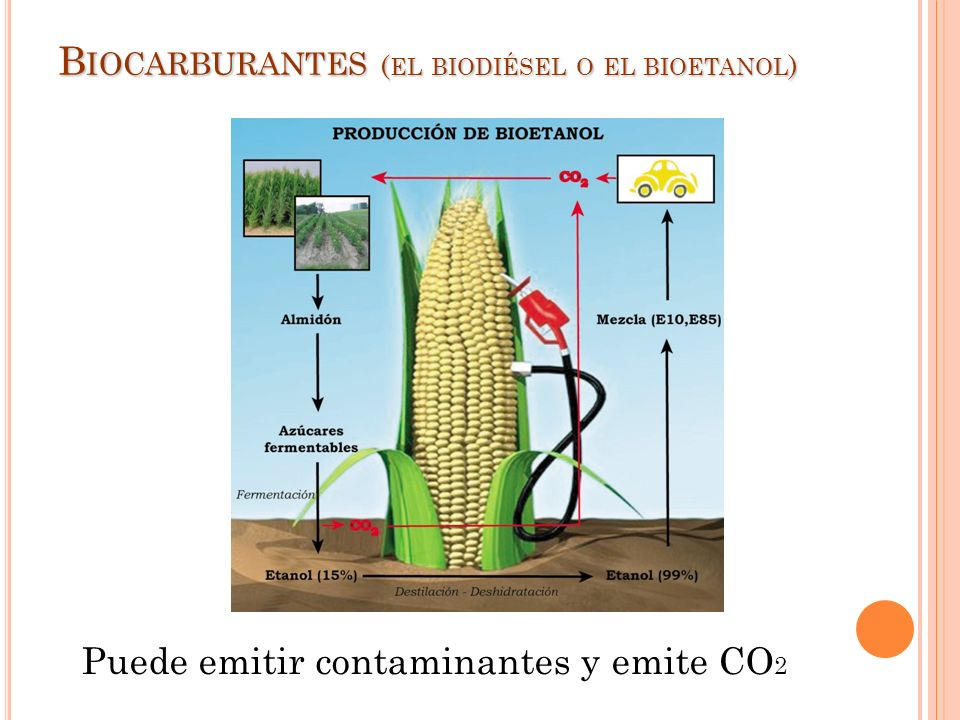 Biocarburantes (el biodiésel o el bioetanol)