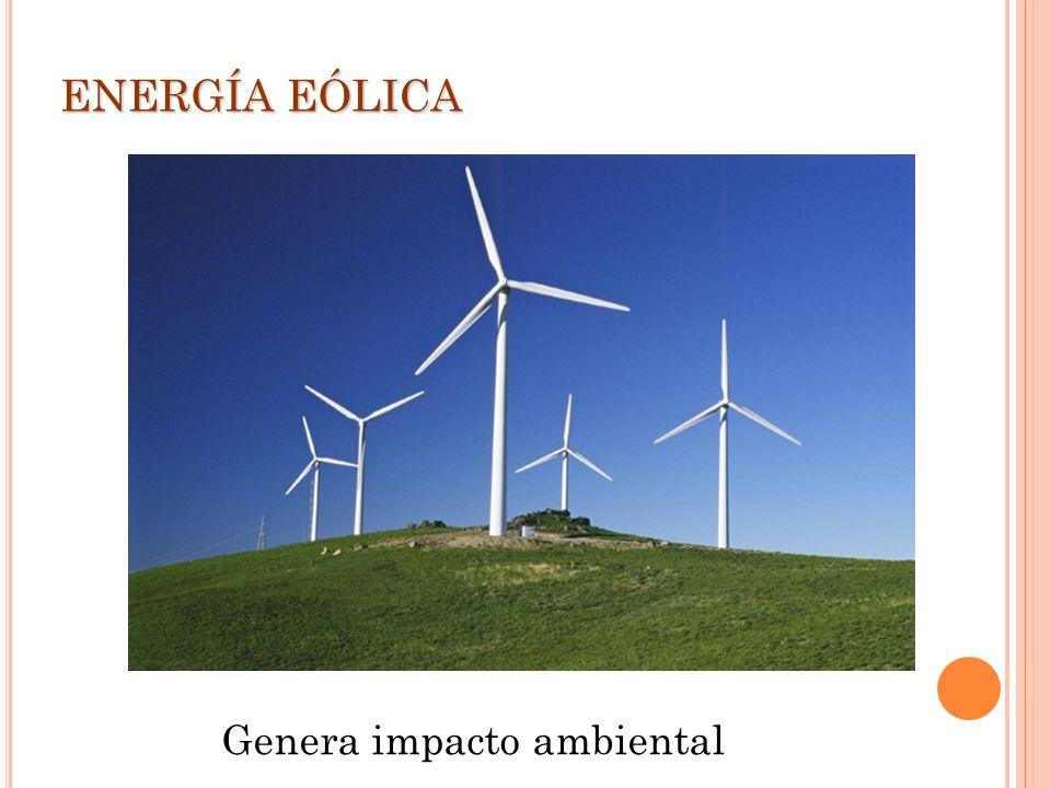 ENERGÍA EÓLICA Genera impacto ambiental
