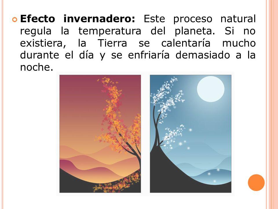 Efecto invernadero: Este proceso natural regula la temperatura del planeta.