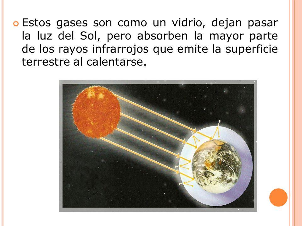 Estos gases son como un vidrio, dejan pasar la luz del Sol, pero absorben la mayor parte de los rayos infrarrojos que emite la superficie terrestre al calentarse.