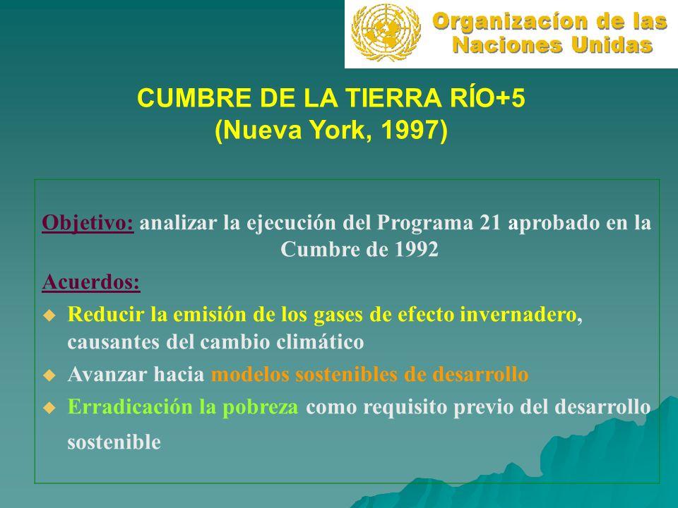CUMBRE DE LA TIERRA RÍO+5