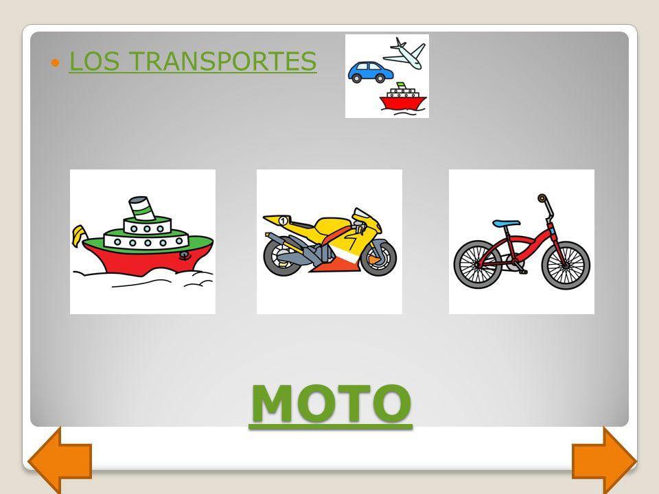 LOS TRANSPORTES MOTO