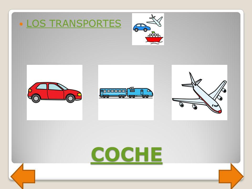 LOS TRANSPORTES COCHE