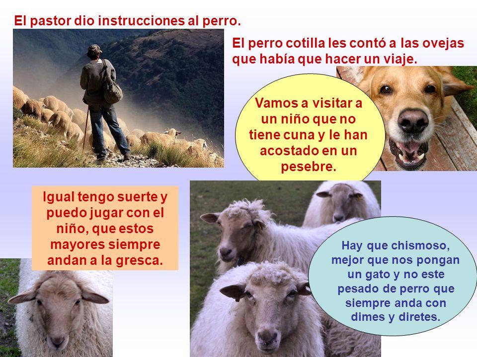 El pastor dio instrucciones al perro.