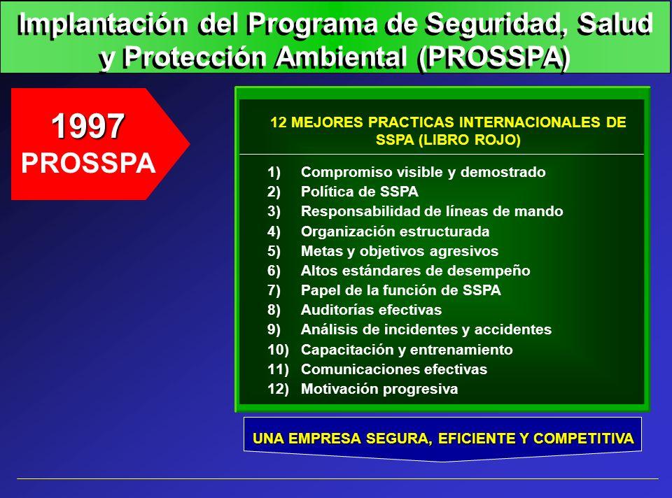 Implantación del Programa de Seguridad, Salud y Protección Ambiental (PROSSPA)