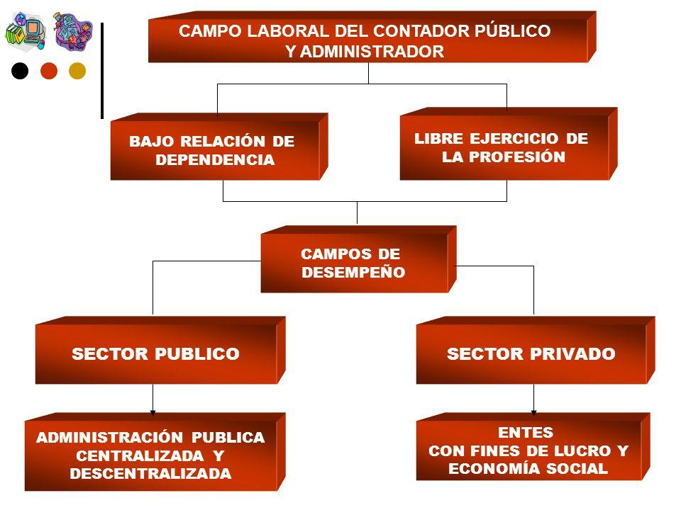 CAMPO LABORAL DEL CONTADOR PÚBLICO