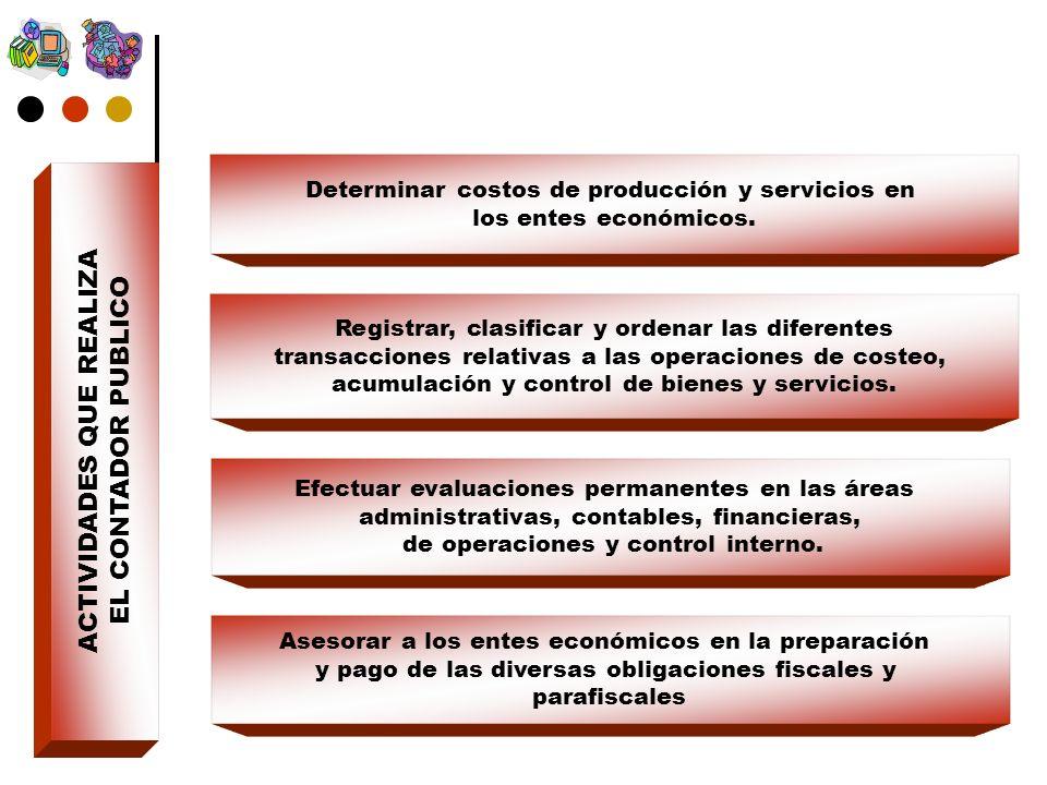 ACTIVIDADES QUE REALIZA EL CONTADOR PUBLICO