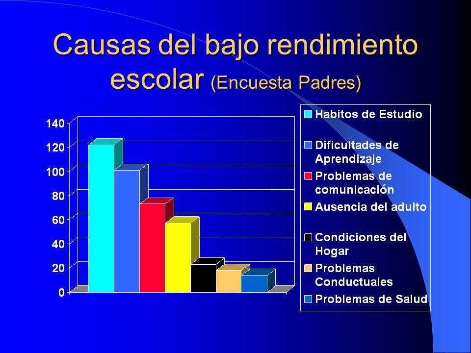 Causas del bajo rendimiento escolar (Encuesta Padres)