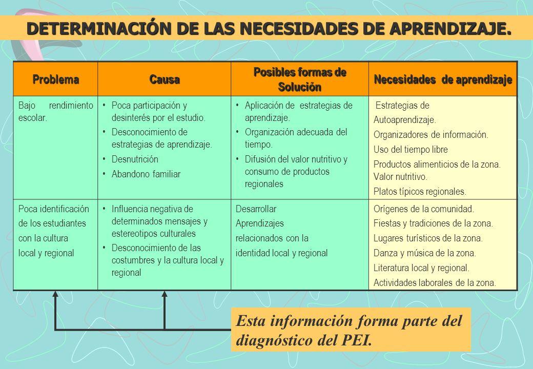 DETERMINACIÓN DE LAS NECESIDADES DE APRENDIZAJE.