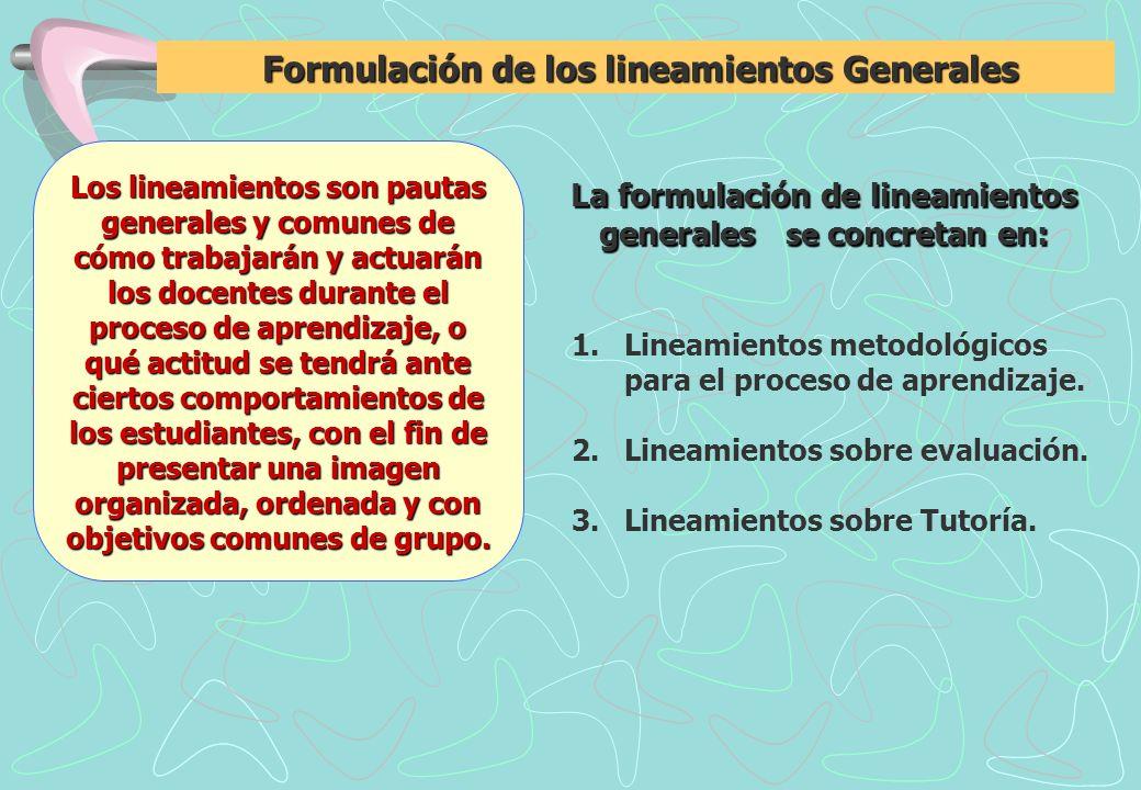 Formulación de los lineamientos Generales