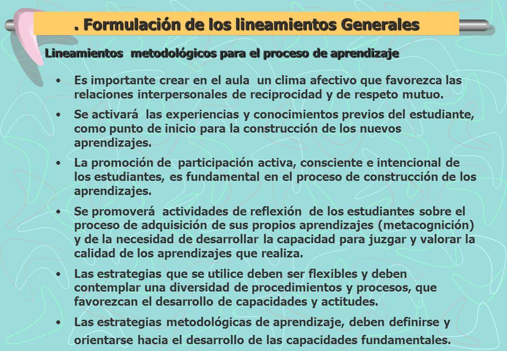 . Formulación de los lineamientos Generales