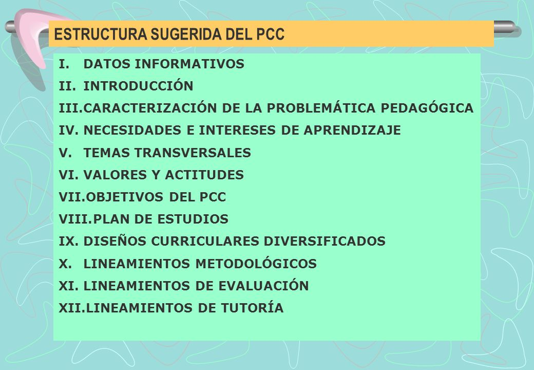 ESTRUCTURA SUGERIDA DEL PCC