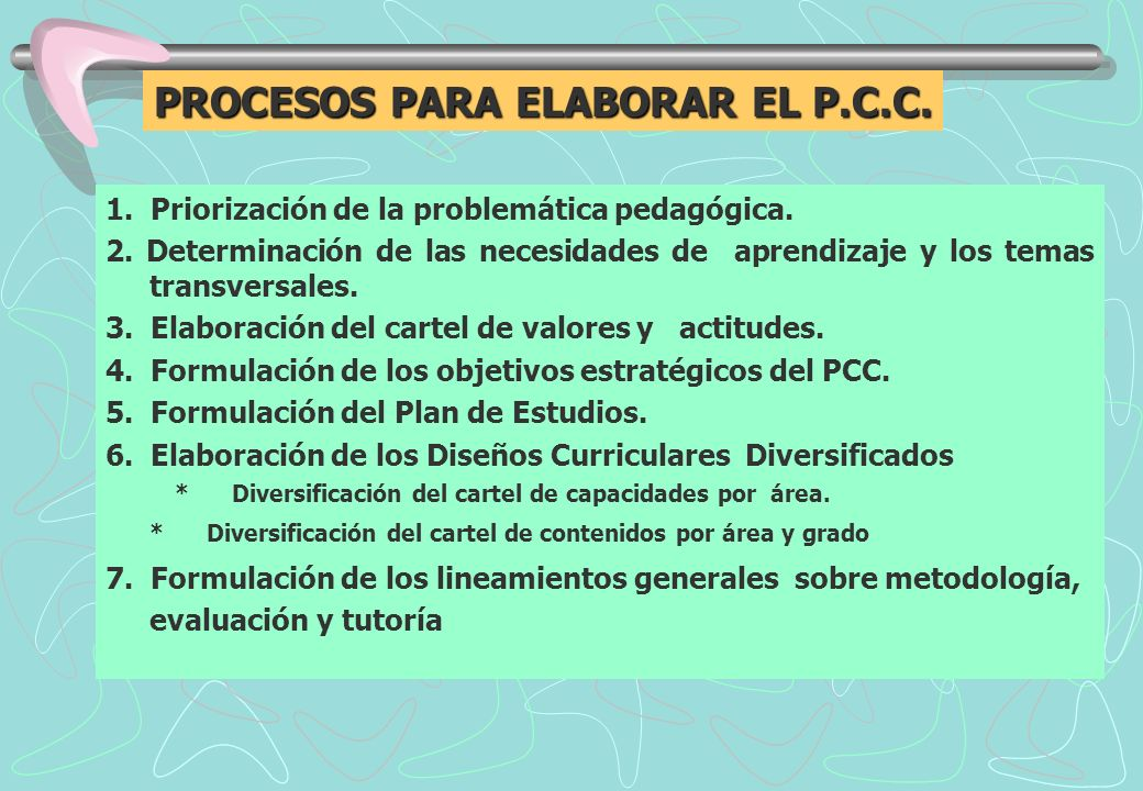 PROCESOS PARA ELABORAR EL P.C.C.