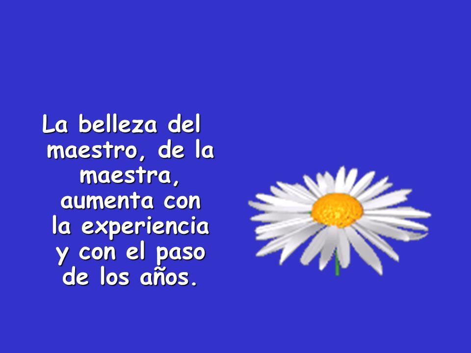 La belleza del maestro, de la maestra, aumenta con la experiencia y con el paso de los años.