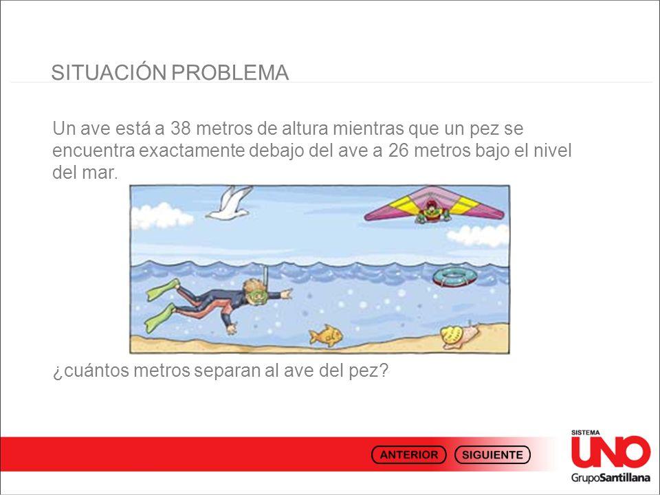 SITUACIÓN PROBLEMA Un ave está a 38 metros de altura mientras que un pez se encuentra exactamente debajo del ave a 26 metros bajo el nivel del mar.