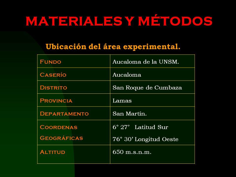 MATERIALES Y MÉTODOS Ubicación del área experimental. Fundo