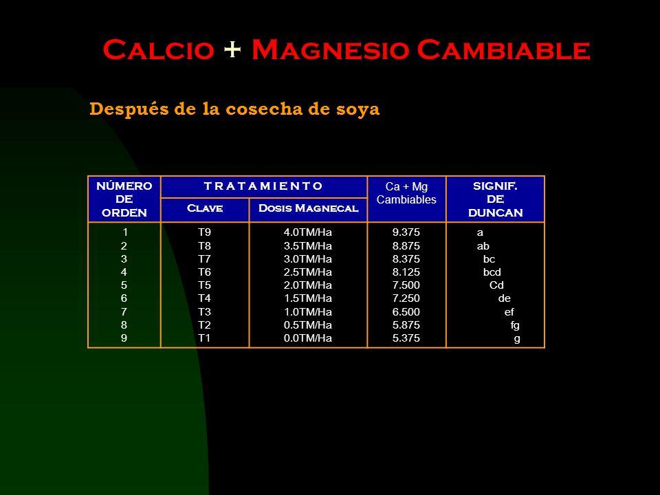 Calcio + Magnesio Cambiable