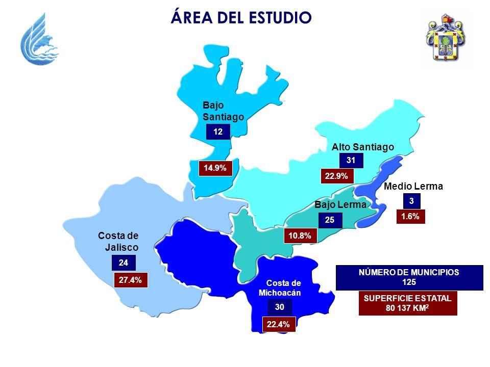 ÁREA DEL ESTUDIO Bajo Santiago Alto Santiago Medio Lerma Bajo Lerma