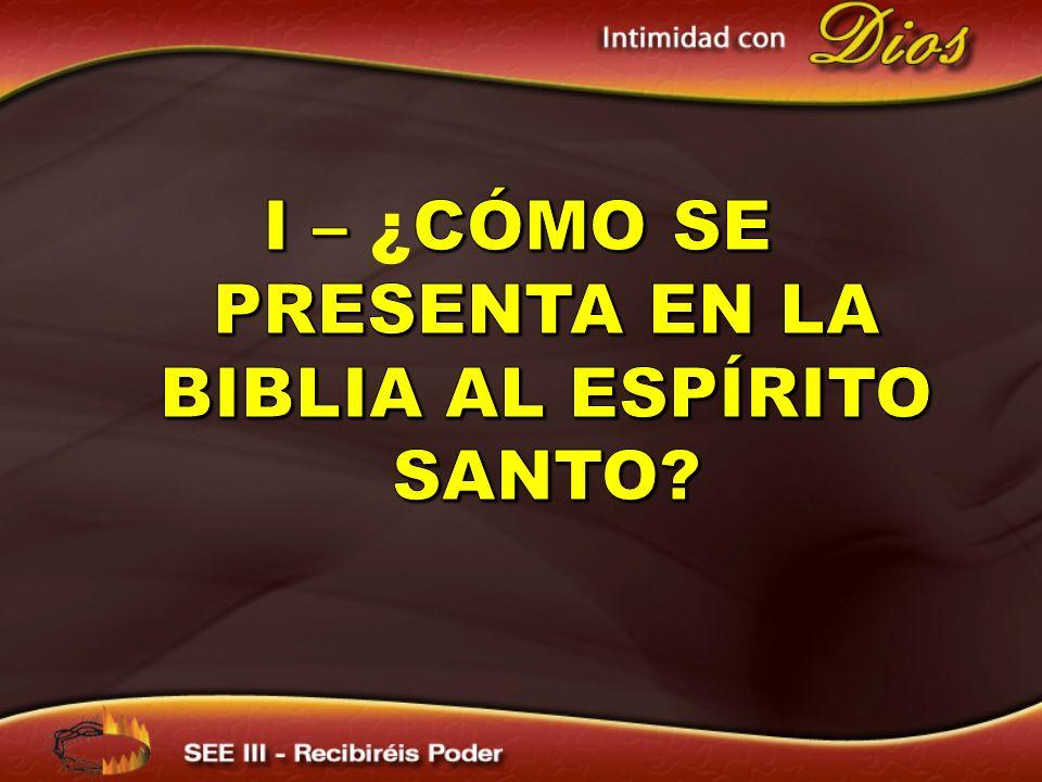 I – ¿CÓMO SE PRESENTA EN LA BIBLIA AL Espírito santo