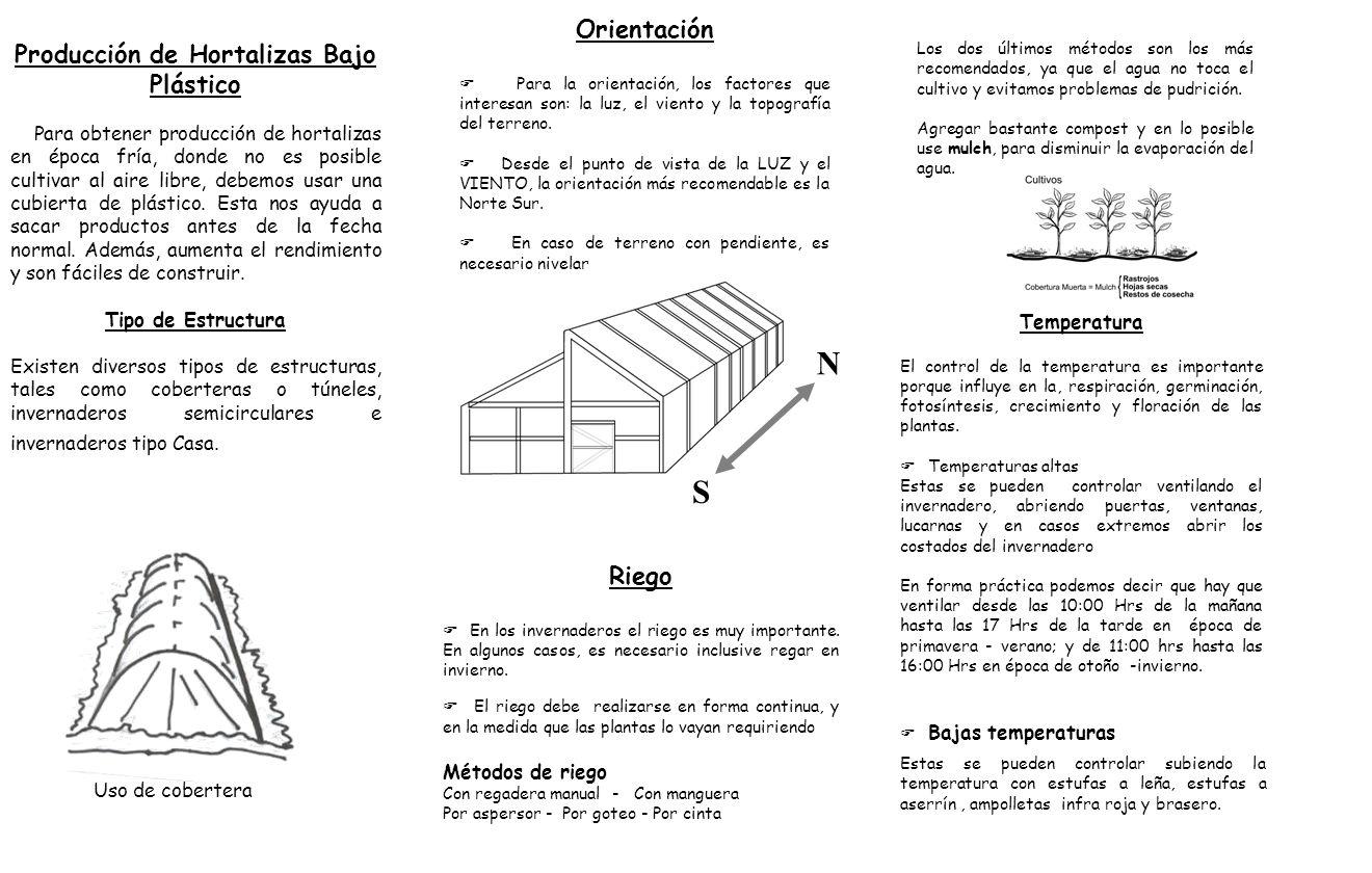 Producción de Hortalizas Bajo Plástico