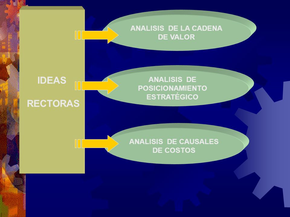 IDEAS RECTORAS ANALISIS DE LA CADENA DE VALOR