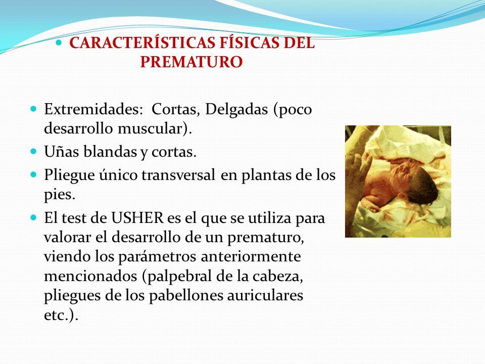 CARACTERÍSTICAS FÍSICAS DEL PREMATURO