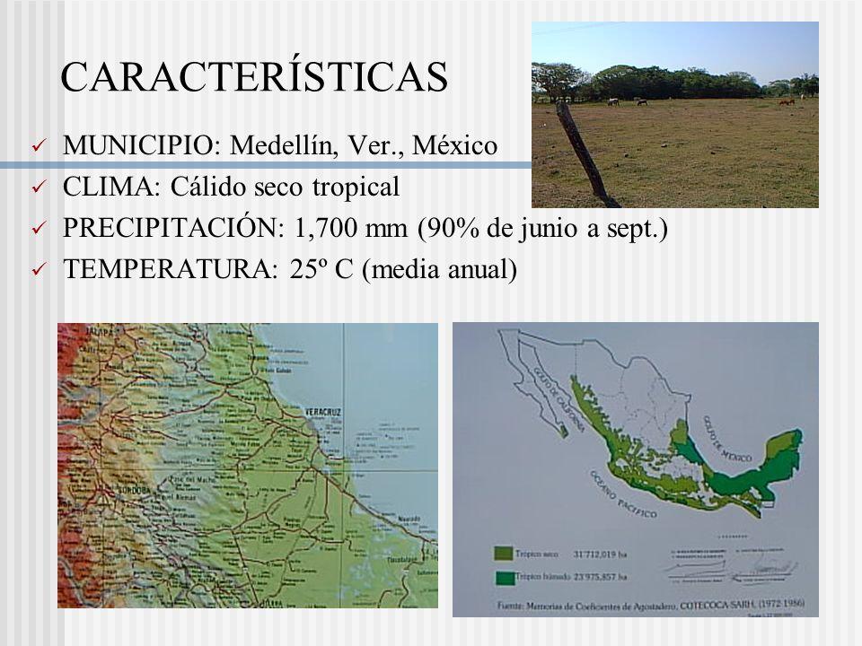CARACTERÍSTICAS MUNICIPIO: Medellín, Ver., México