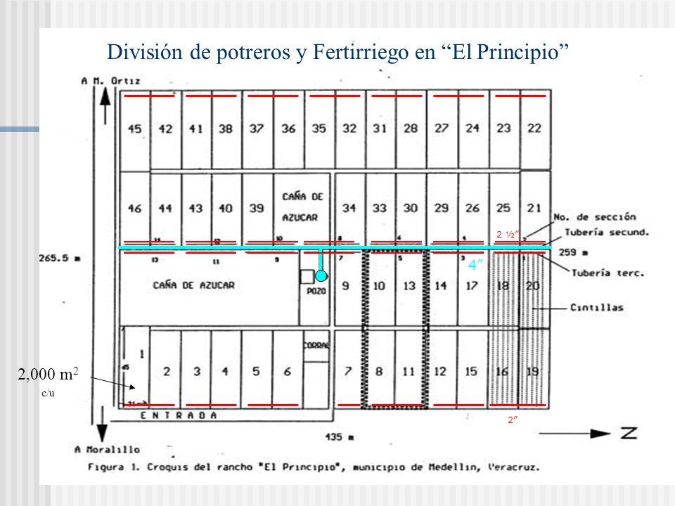 División de potreros y Fertirriego en El Principio