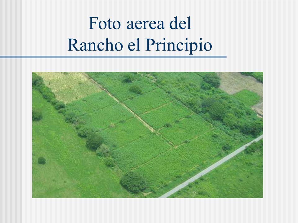 Foto aerea del Rancho el Principio