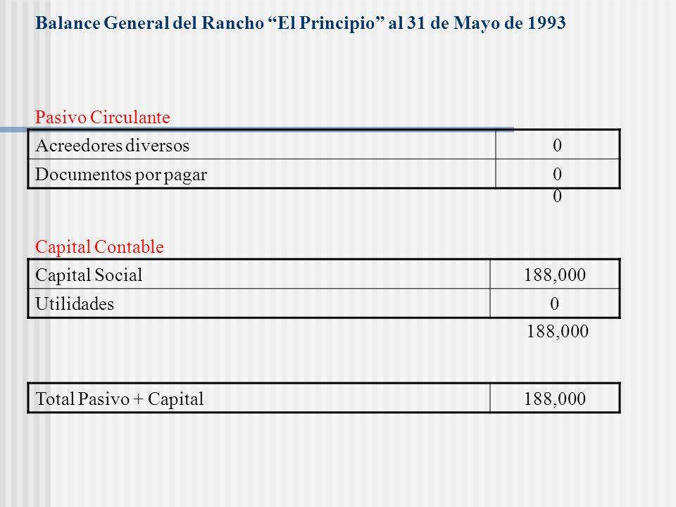 Balance General del Rancho El Principio al 31 de Mayo de 1993