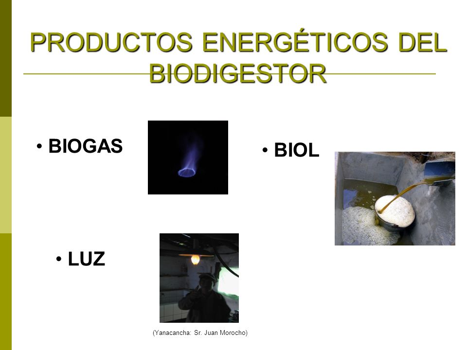 PRODUCTOS ENERGÉTICOS DEL BIODIGESTOR