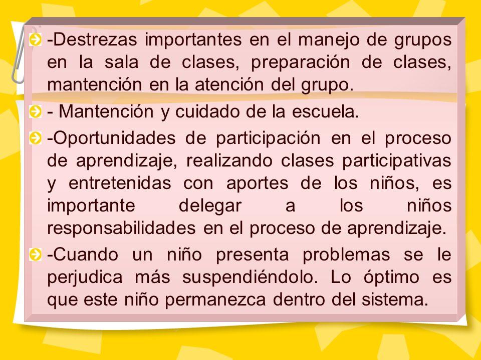 -Destrezas importantes en el manejo de grupos en la sala de clases, preparación de clases, mantención en la atención del grupo.