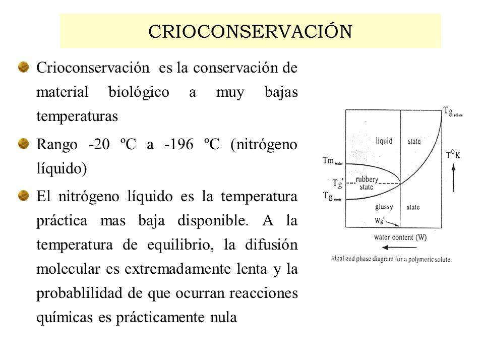 CRIOCONSERVACIÓN Crioconservación es la conservación de material biológico a muy bajas temperaturas.