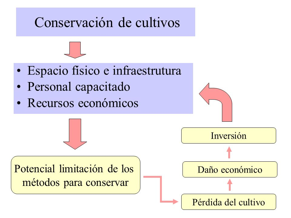 Conservación de cultivos