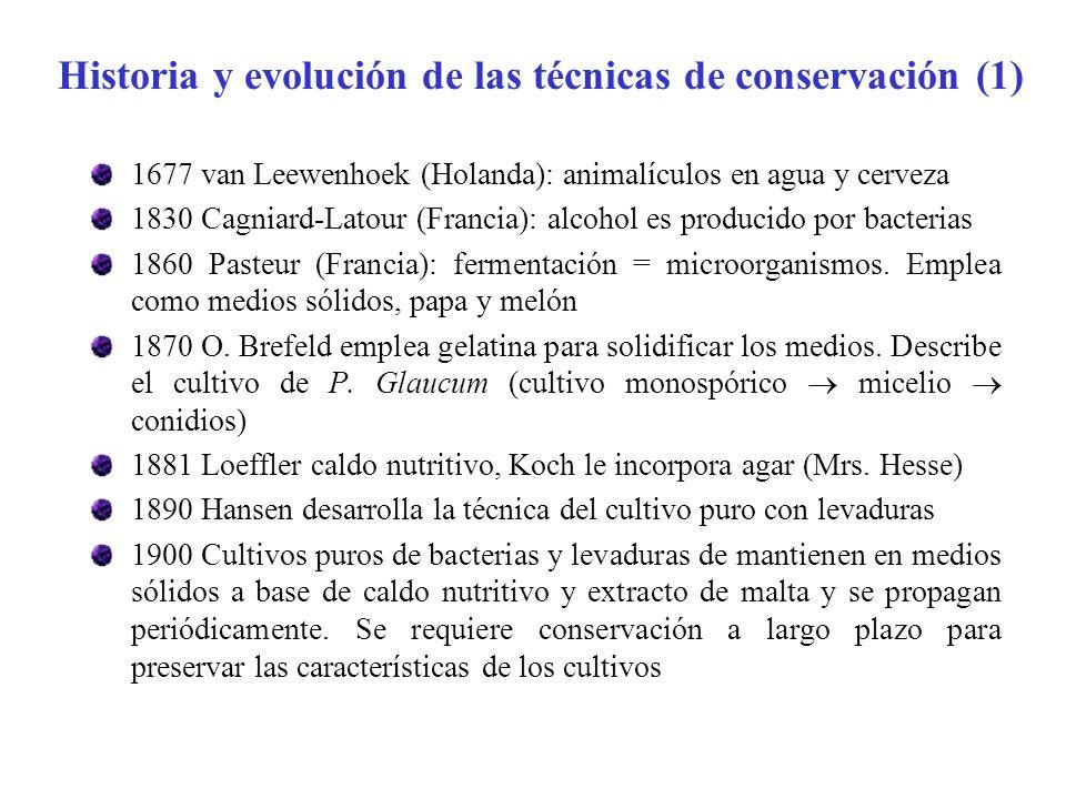 Historia y evolución de las técnicas de conservación (1)