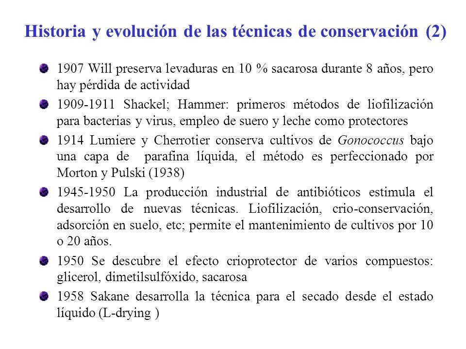 Historia y evolución de las técnicas de conservación (2)