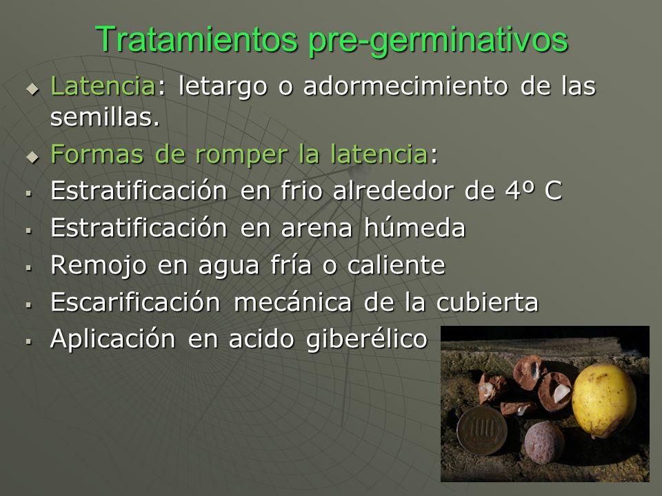 Tratamientos pre-germinativos