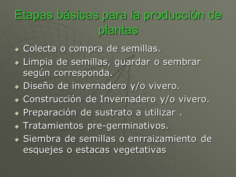 Etapas básicas para la producción de plantas