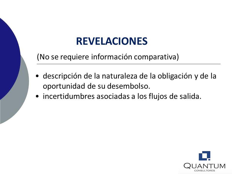REVELACIONES (No se requiere información comparativa)