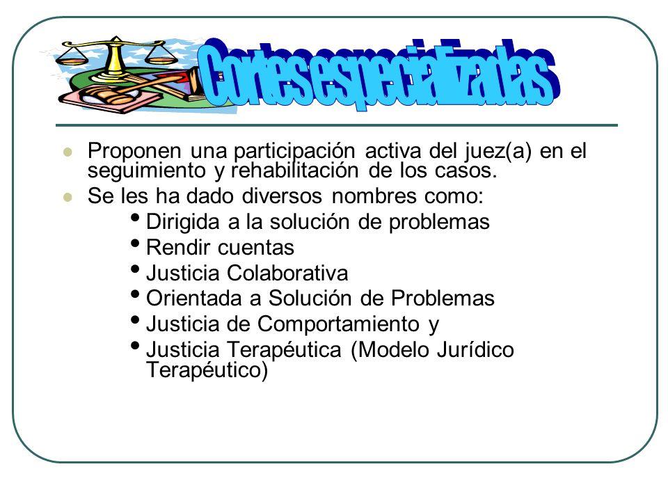 Cortes especializadas