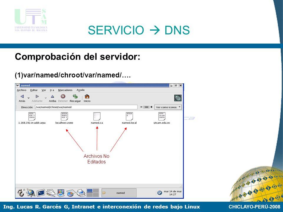 SERVICIO  DNS Comprobación del servidor:
